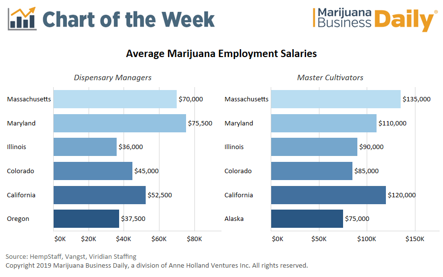 eastern salaries top western compensation in cannabis