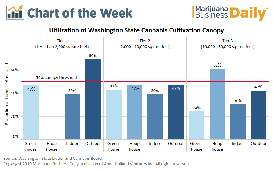 Washington cannabis canopy report, Chart: Low prices, lack of investment stifle cannabis growing capacity in Washington state