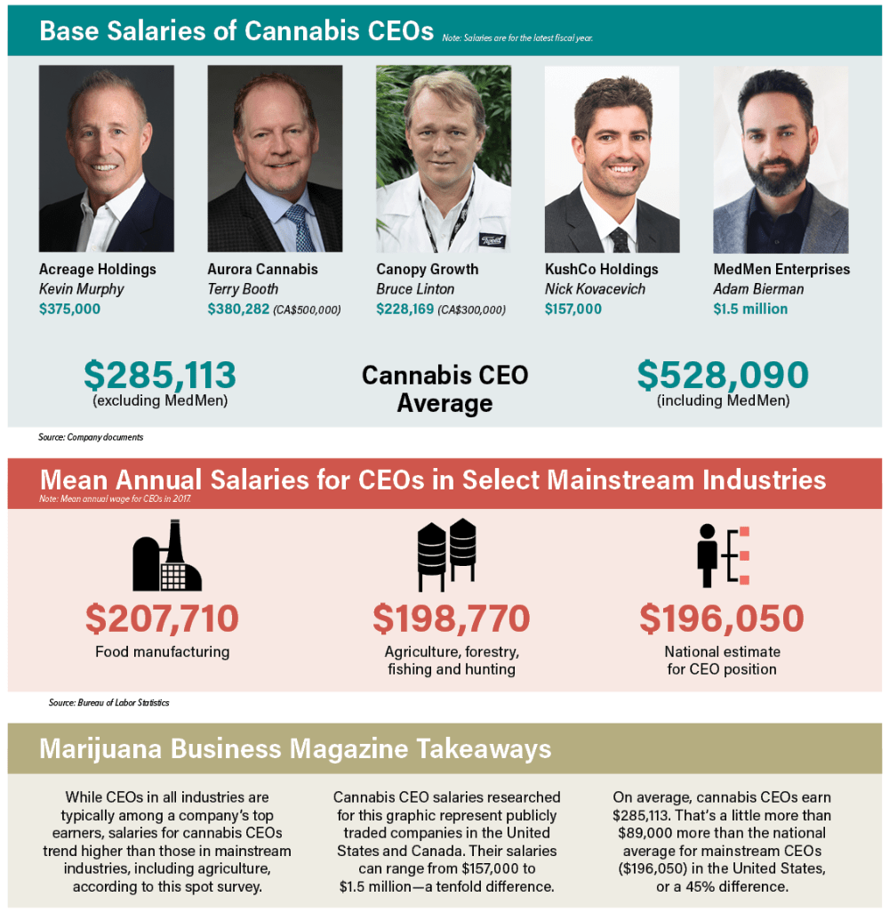 marijuana CEO salaries, Exclusive: How cannabis industry CEO salaries compare with mainstream counterparts