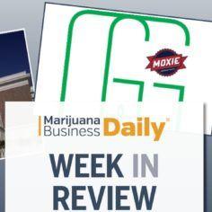 Laura Hamilton | Author at Marijuana Business Daily