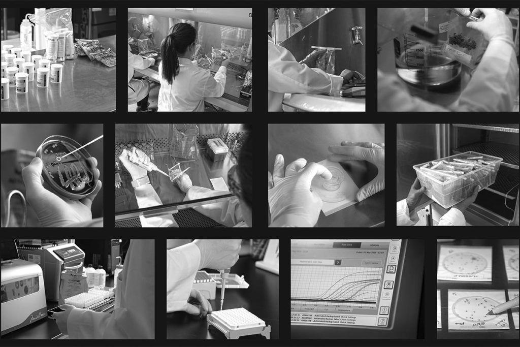, A day in the life: Marijuana lab testing (SLIDESHOW)