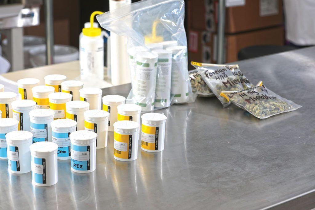 Prepare a Biosafety Cabinet
