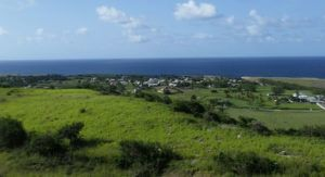 Barbados medical cannabis, Barbados medical cannabis law clears final hurdle in Parliament