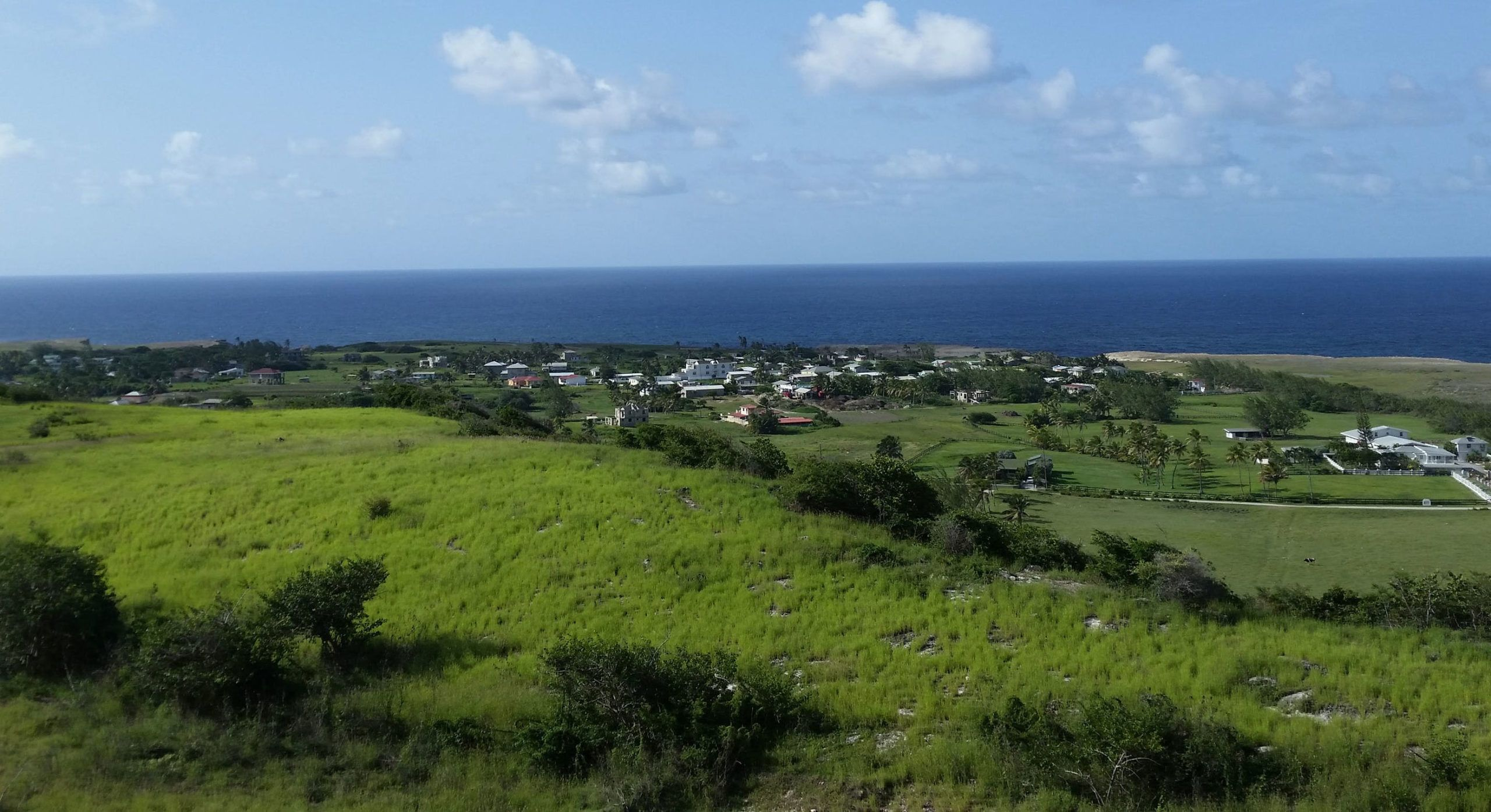 Barbados medical cannabis, Barbados latest Caribbean country to propose sweeping medical cannabis law
