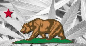California water cultivation licenses, California water board sends warnings to cannabis growers