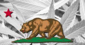 California marijuana market, No one clear path around California marijuana industry's major business woes, insiders lament