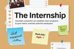 marijuana internships, Internships allow marijuana companies to 'grow talent from within'