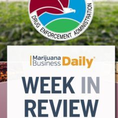 Marijuana Dispensary News   Cannabis Store & Retail News