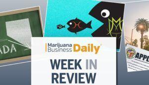New L A  cannabis retail permit round, MMJ license race hot