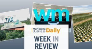 cannabis business news, Week in Review: Early freeze costs largest CO marijuana cultivator millions, Weedmaps lays off 100+, MJ licensing probes escalate & more