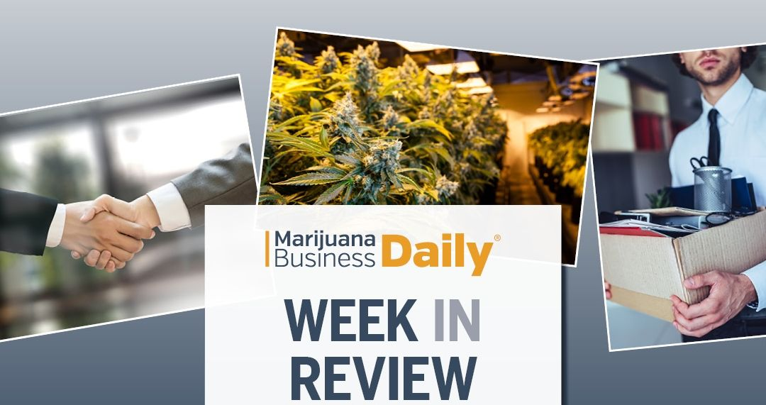 Cannabis layoffs, regulators scrutinizing vitamin E acetate as vape villain, MI adult-use launch looms & more