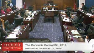 , Trinidad and Tobago's proposed medical cannabis law advances