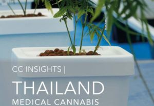 Thailand medical marijuana, Report: Thailand issues 442 medical cannabis licenses, but full market access years away