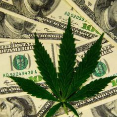 marijuana funding, sales