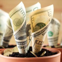 marijuana sales and funding