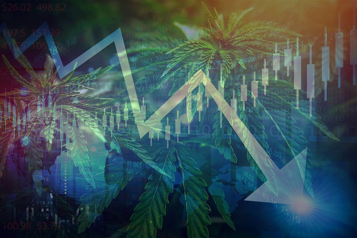 cannabis: recession, Is marijuana 'recession-proof?' Industry experts say yes – to a point – and alcohol might be a guide