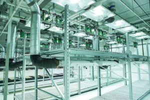 cannabis extraction facility, Five key tips to designing an efficient cannabis extraction facility