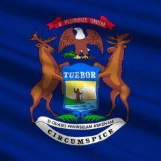 Image of Michigan state flag