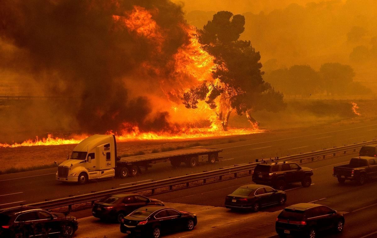 , California wildfires claim several marijuana farms, threatening growers with financial losses