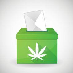 Image of ballot box bearing marijuana leaf