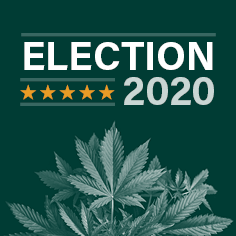 US Senate elections; marijuana, 35 US Senate seats are up for grabs, and several would be key wins for the cannabis sector
