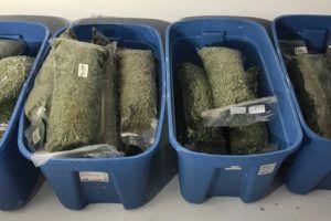 , Crop Storage Strategies