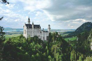 , Growing Momentum: Germany