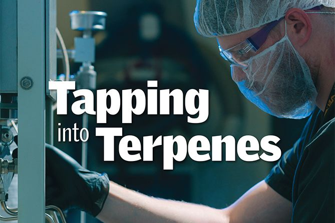 , Tapping into Terpenes