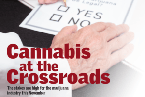 , Election 2016: Cannabis at the Crossroads