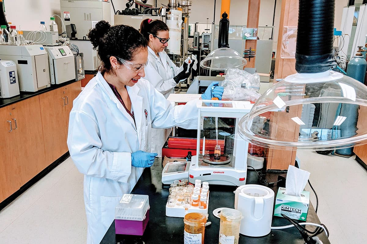 Cannabis lab workers