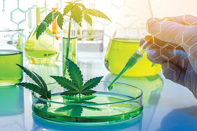 US House passes bill to expedite, expand medical cannabis research