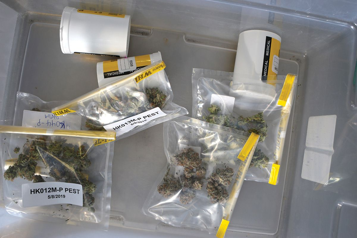 , Have a plan in place for damage control during a marijuana recall