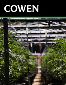 Cowen Report: Disruption Junction, The Cannabis Growth Function