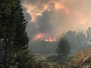 western wildfires; marijuana crop protection, Six ways cannabis growers can defend their farms against wildfires