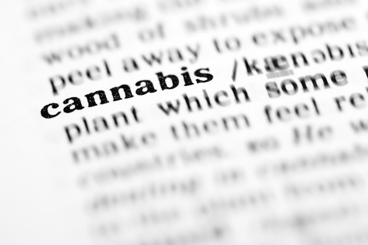 Cannabis terminology, Guide to key cannabis business terms