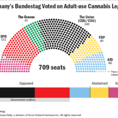 Chart showing how Germany's Bundestag voted on Adult-use cannabis