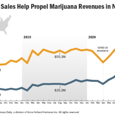 Chart showing marijuana sales, especially the flower category, growing in Nevada
