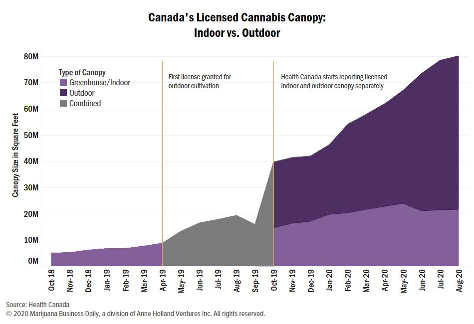Canadian cannabis greenhouses, Canadian cannabis greenhouse space in retreat as outdoor capacity doubles