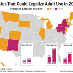 Chart showing states that could legalize adult use in 2021