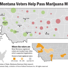 Map showing support and opposition for Montana's 2020 recreational marijuana measure.