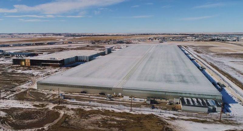 post-image-Aurora Cannabis puts mammoth 1.7 million-square-foot greenhouse on the sales block