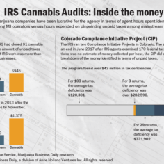 An informational graphic showing inside 280e IRS audits