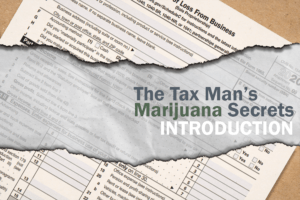 "Cover image for MJbizdaily's ""The Tax Man's Marijuana Secrets: Introduction"""