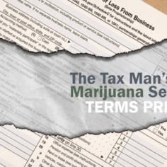 "Logo art for ""The Tax Man's Marijuana Secrets"" terms primer"