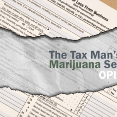 A logo image for The Tax Man's Marijuana Secrets