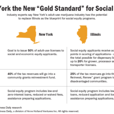 Table showing the differences between the marijuana social equity programs in New York and Illinois.