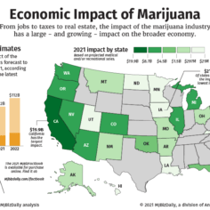 A map showing the economic impact of the marijuana industry on U.S. states.