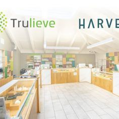 Trulieve-Harvest merger