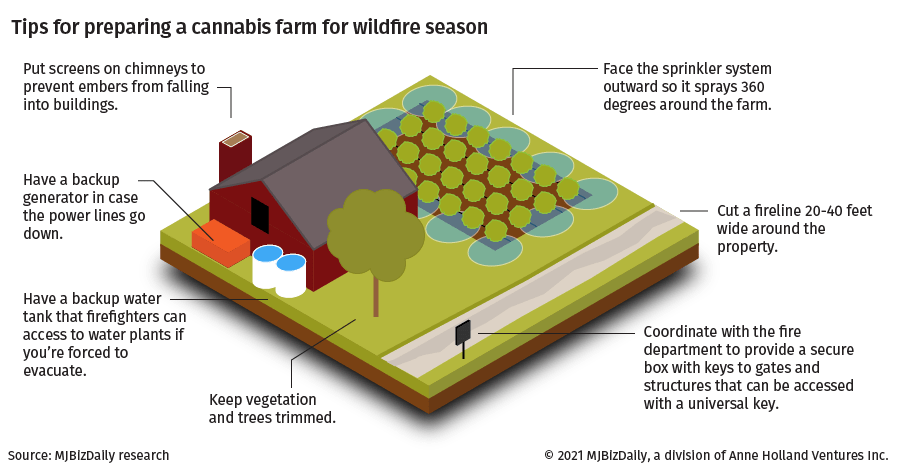 An information graphic showing how to build a defensive space around a cannabis farm.