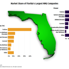 Florida image with bar charts of the market share for top MMJ companies